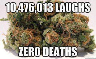 Truth about cannabis
