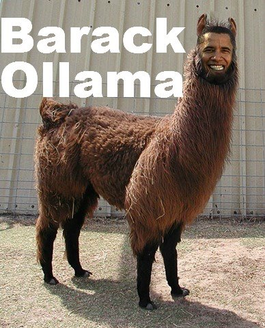 Obama meme which is one of the funniest photos on the internet